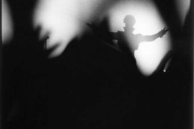 Prince Shadow Photo, by Terry Gydesen