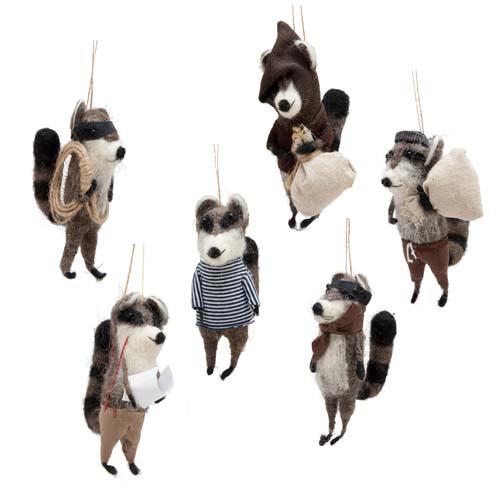 Roost racoon bandits
